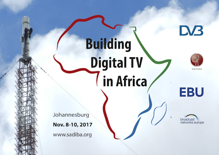 Building Digital TV in Africa